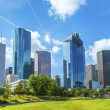 Skyline of Houston, Texas — Stock Photo #29609005