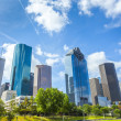 Skyline of Houston, Texas — Stock Photo #29609787
