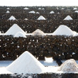 Salt piles on saline exploration — Stock Photo #30106941