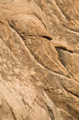 Scenic rocks like a head in Joshua tree national park — Stock Photo