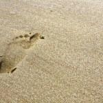Mark of feet at the beach — Stock Photo #30259649