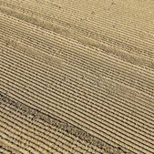 Pattern of grated sand early morning at south beach — Stock Photo