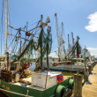 Boats for shrimps fishing in Pass Christian — Stock Photo #31134909