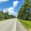 Empty highway in america with trees and blue sky — Stock fotografie
