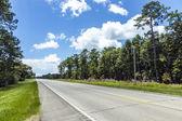在美国,树木和蓝蓝的天空的空公路 — 图库照片