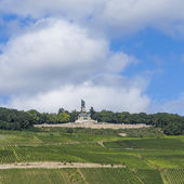 Niederwald memorial at Ruedesheim — Stock Photo