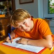 Boy prepares his homework for school — Stock Photo #32924405