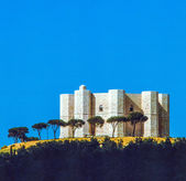 Castel del Monte is situated on a solitary hill in southeast Ita — Stock Photo
