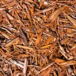 Background of natural wood shavings — Stock Photo #34406277