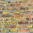Background of brick wall texture — Stock Photo
