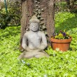 Stone buddha in front of a tree — Stock Photo