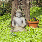 Stone buddha in front of a tree — Photo