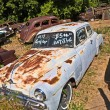 Junk yard with old beautiful oldtimers — Photo