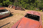Junk yard with old beautiful oldtimers — Stock Photo