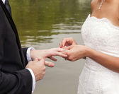 Wedding couple are swearing lifetime loyality — Stock Photo