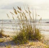 Mladík se těší na moře — Stock fotografie