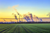 Industry complex in Frankfurt in early morning with green fields — Stock Photo