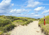 Way through the dunes on the island of Fanoe in Denmark — Stock Photo