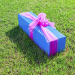 Gift packed in a box — Stock Photo