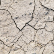 Dry cracked earth texture — Stock Photo
