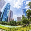 Stock Photo: Skyline of Houston in daytime