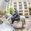 Policeman on horse checks correct parking — Stock Photo