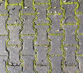 Harmonic pattern of floor structure — Stock Photo