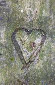 Kalp ağaç oyma — Stok fotoğraf
