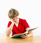 Cute pupil learning for school — Stock Photo