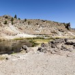 Hot springs at hot creek geological site — Stock Photo #41589869