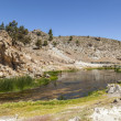 Hot springs at hot creek geological site — Stock Photo #41590029