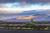 Extinguished volcanoes in Timanfaya National Park — Stock Photo