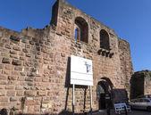 王バルバロッサ、カイザープファルツから有名な古い城 — ストック写真