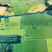 Widok na zielone pola i stoki — Zdjęcie stockowe