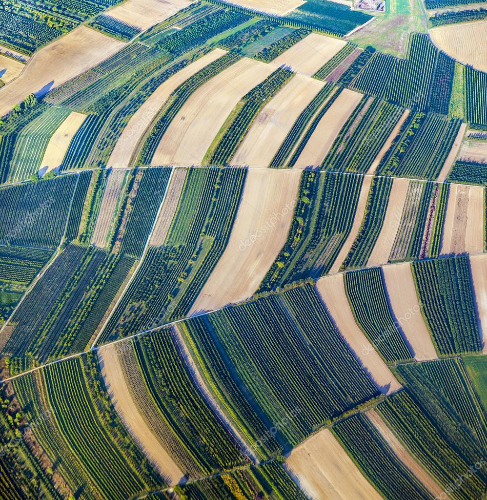 绿色的田野和斜坡的鸟瞰图