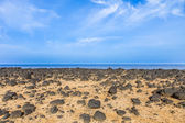 Dry area with old lava stones  at the coastline  — Stock Photo