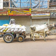 Ox cart transportation on early morning in old Delhi — Stock Photo #44045467