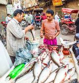 Selling fish on fish market in New Delhi — Stock Photo