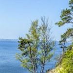 浪漫陡峭悬崖上跳下湖 — 图库照片 #45412615