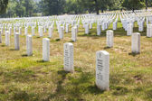 Headstones at the Arlington national Cemetery — Zdjęcie stockowe