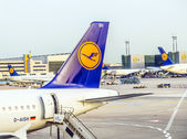 Lufthansa Aircrafts standing at the terminal 1 at Frankfurt airp — Stock Photo