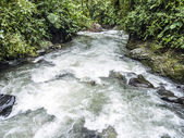 Rio Mindo, western Ecuador, river running through cloudforest at — Stock Photo