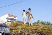 Men load the straw on the tractor after harvest — 图库照片