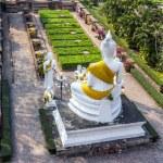 Buddha statues at the temple of Wat Yai Chai Mongkol in Ayutthaya near Bangkok, Thailand — Stock Photo #48862025
