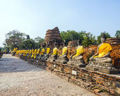 Buddha statues at the temple of Wat Yai Chai Mongkol in Ayutthay — Foto de Stock