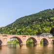 Old bridge in Heidelberg - Germany — Stock Photo