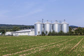 Four silver silos in field — Stock Photo