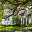 Постер, плакат: Old homes at the Charpentier district in Lake Charles