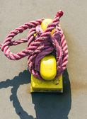 ロープでポラード — ストック写真