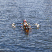 Boat team trains at river main — Stok fotoğraf